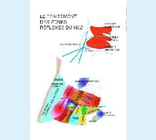 PLJVBA0113-AN - Zones réflexes du nez