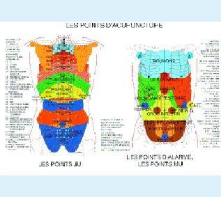 J. V. BAARLE 21x30 Points Acupuncture - Alarme - MU - JU - FR  - plastifiée-PLJVBA022-FR